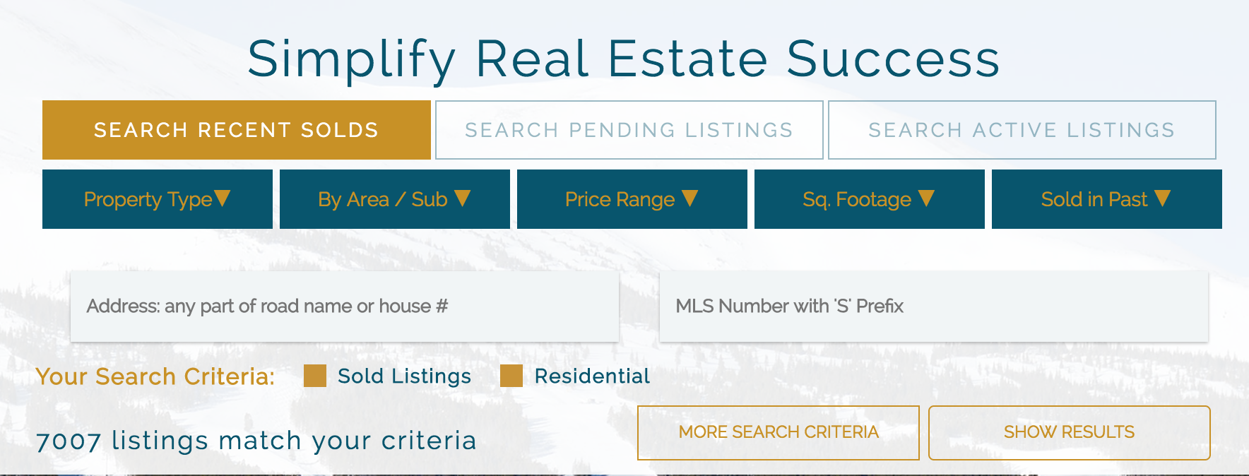 a screenshot of the search section on the home page at Real Estate Summit County